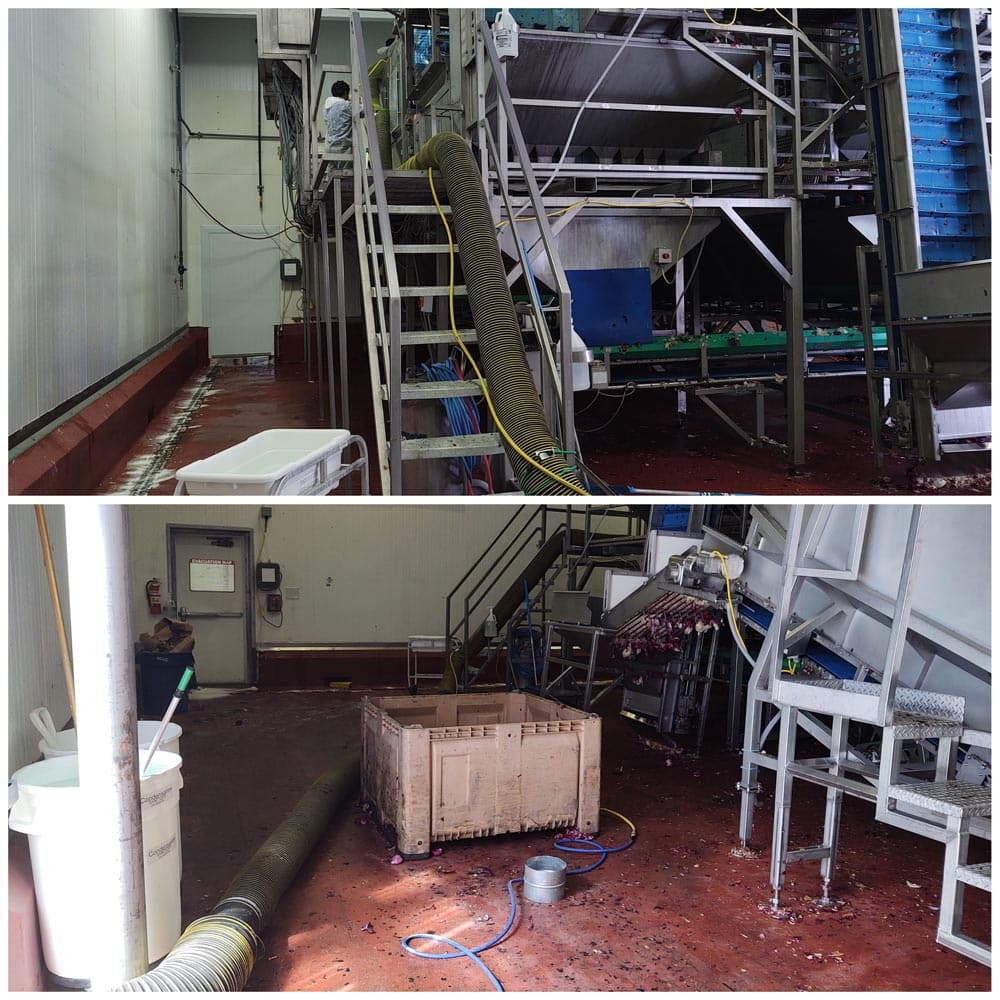 Commercial Setup Negative Air Hoses Taylor Farms Salinas