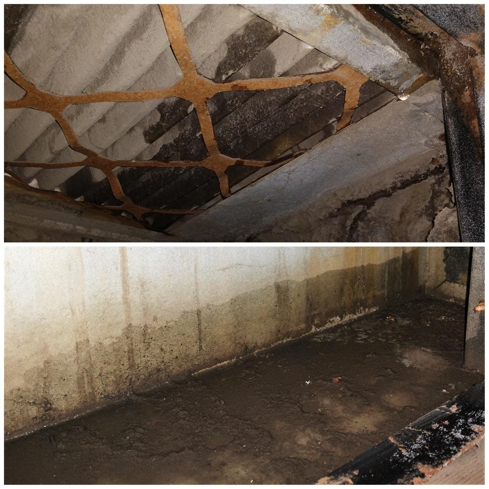 Commercial Ventilation Inspections Drain Pan Overflow Water Damage